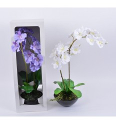 POT ORCHIDEE DECO - BLANC