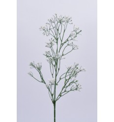 GYPSOPHILLE WHITE