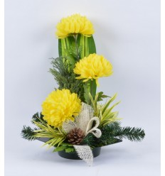 PLATEAU CARRE CHRYSANTHEME