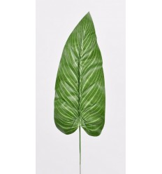FEUILLE ANTHURIUM GREEN