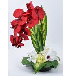 CARRE EXCEPTION ORCHIDEE LYS MAGNOLIA RENONCULE RED