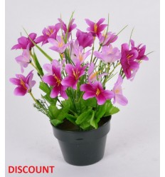 POT DISCOUNT 12 CM MINI LYS GYPSO COLORIS ASSORTIS
