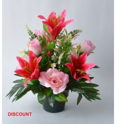 POT DISCOUNT 12 CM ROSE LYS ASSORTI