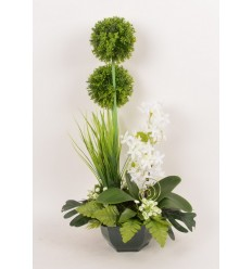 OCEA 17 CM ALLIUM OMBRELLE ACHILLEA CREAM GREEN