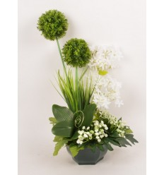 OCEA 20 CM ALLIUM OMBRELLE ACHILLEA CREAM GREEN