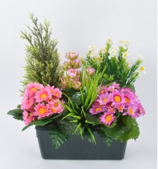 JARDINIERE 25 CM FOUGERE CYPRES DAISY ASS