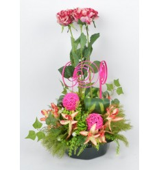 COUPE MARGUERITE ROSE ORCHIDEE LILAC