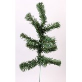 GREEN SAPIN X 12